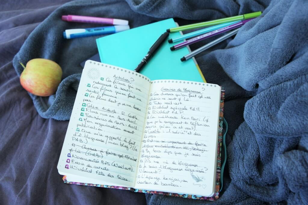 carnets-organisation-blogging