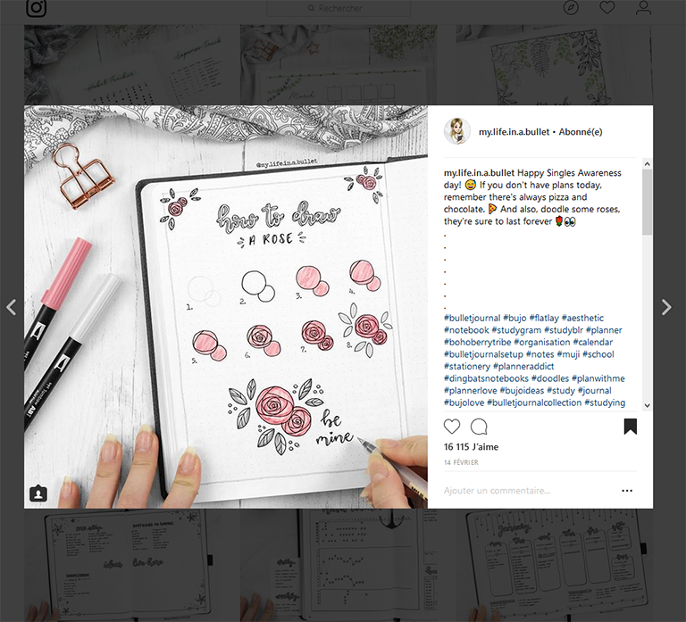 mon bullet journal - mes inspirations Instagram
